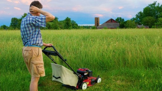 How-to-mow-in-tall-grass-620x350